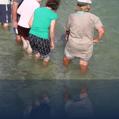 Oliver Weyl australien-natur0.jpg