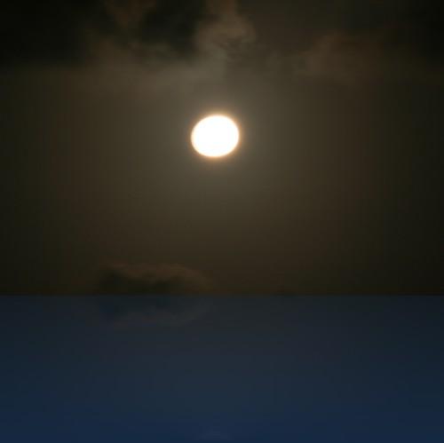 Oliver Weyl australien-natur104.jpg