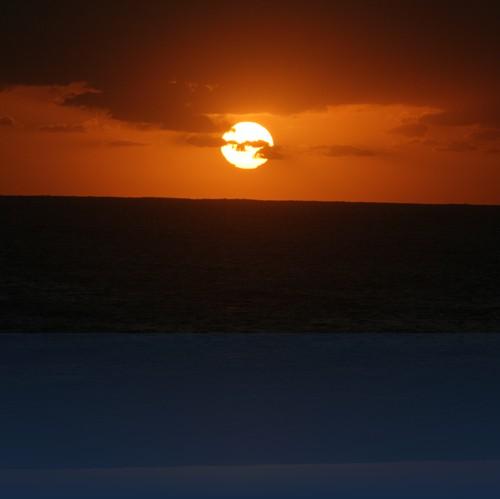 Oliver Weyl australien-natur110.jpg