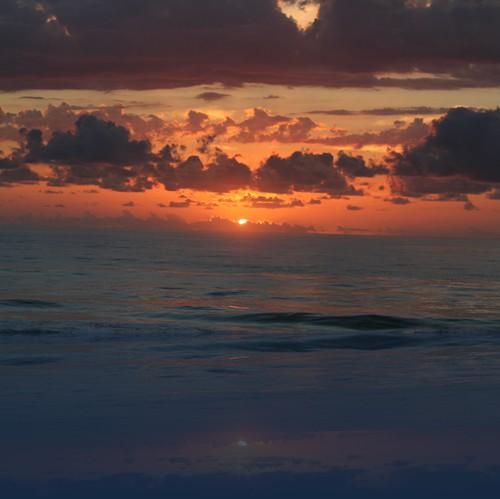 Oliver Weyl australien-natur138.jpg