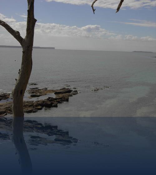 Oliver Weyl australien-natur159.jpg