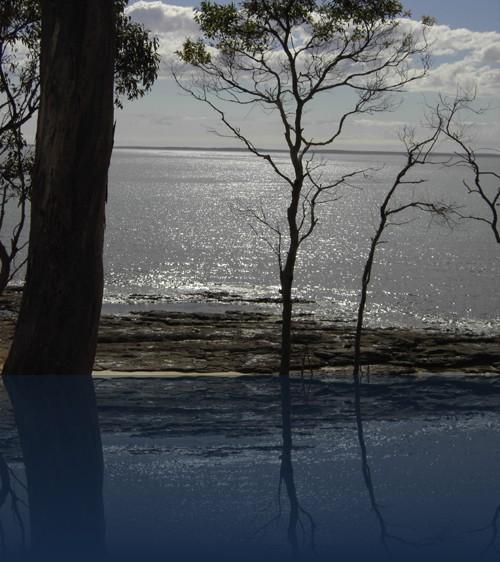 Oliver Weyl australien-natur160.jpg