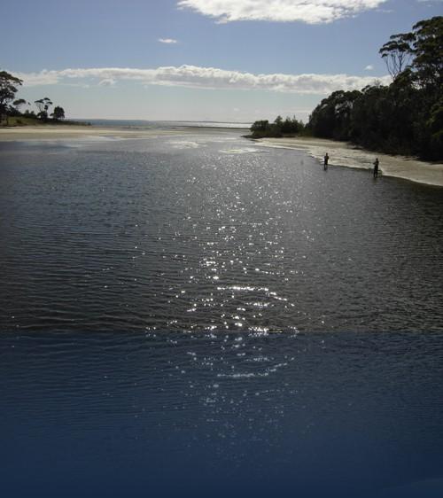Oliver Weyl australien-natur164.jpg