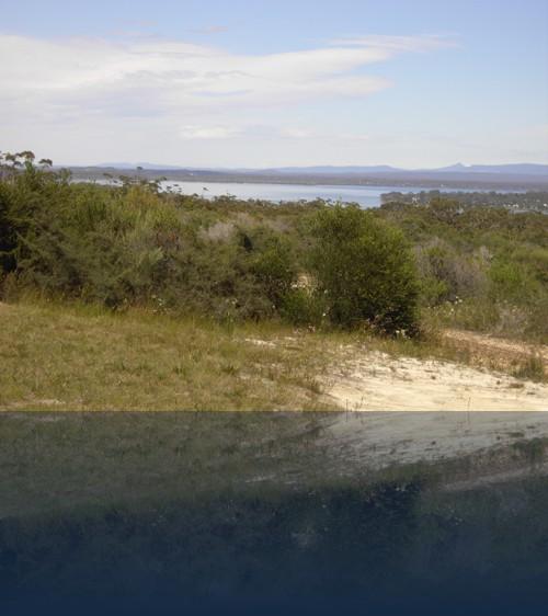 Oliver Weyl australien-natur165.jpg