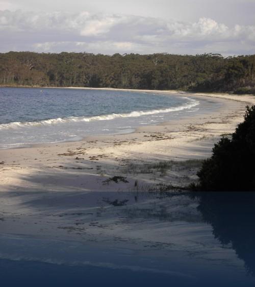 Oliver Weyl australien-natur169.jpg