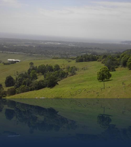 Oliver Weyl australien-natur210.jpg