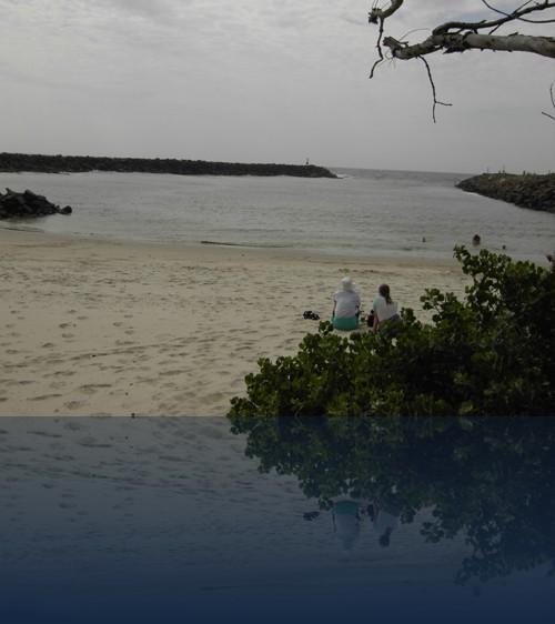 Oliver Weyl australien-natur215.jpg