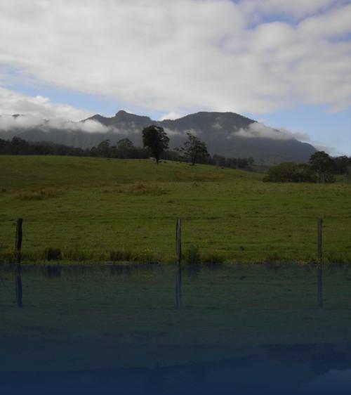 Oliver Weyl australien-natur217.jpg