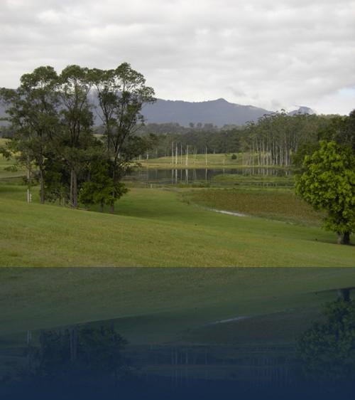 Oliver Weyl australien-natur219.jpg