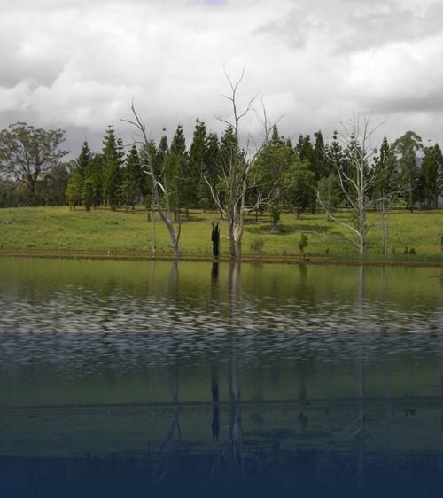 Oliver Weyl australien-natur227.jpg