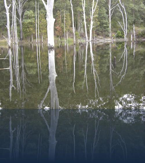 Oliver Weyl australien-natur230.jpg