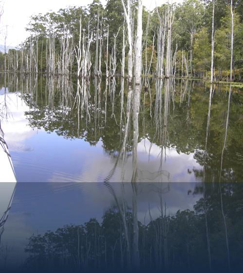 Oliver Weyl australien-natur232.jpg