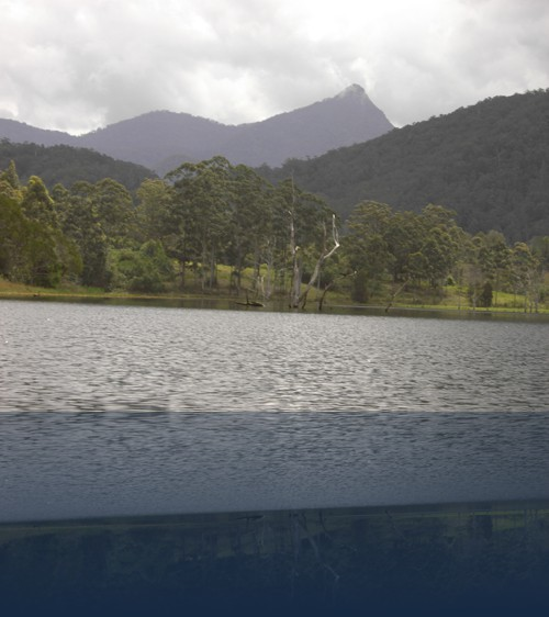 Oliver Weyl australien-natur233.jpg