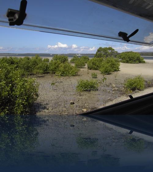 Oliver Weyl australien-natur241.jpg
