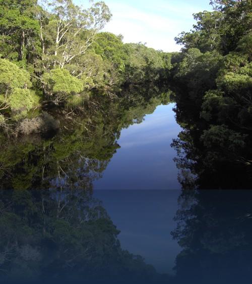 Oliver Weyl australien-natur249.jpg
