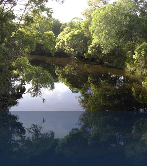 Oliver Weyl australien-natur250.jpg