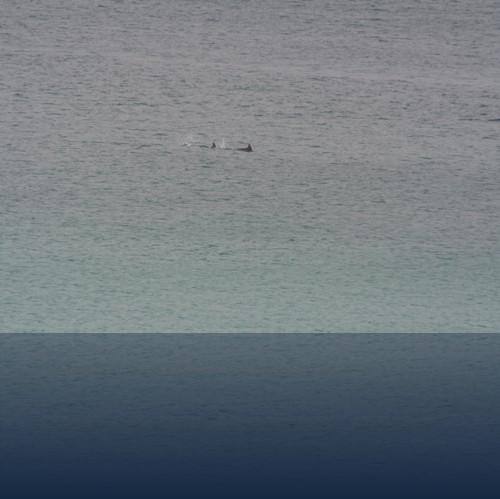 Oliver Weyl australien-natur36.jpg