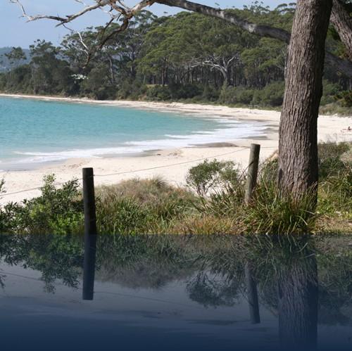 Oliver Weyl australien-natur55.jpg