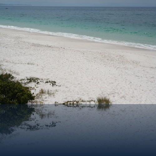 Oliver Weyl australien-natur6.jpg