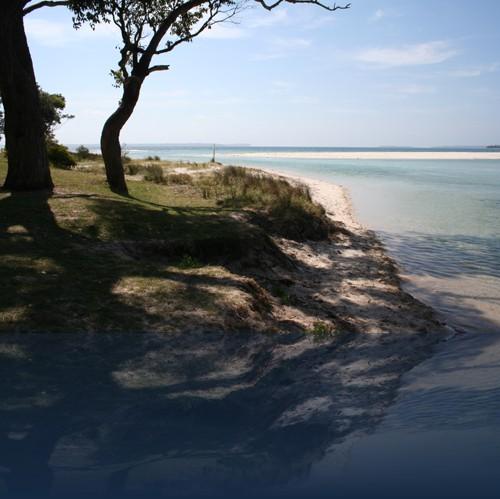 Oliver Weyl australien-natur67.jpg