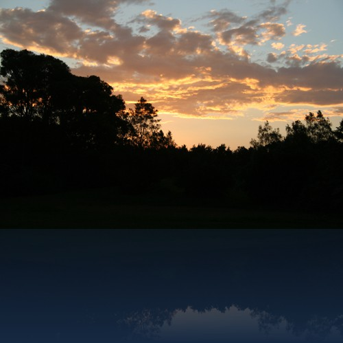 Oliver Weyl australien-natur75.jpg