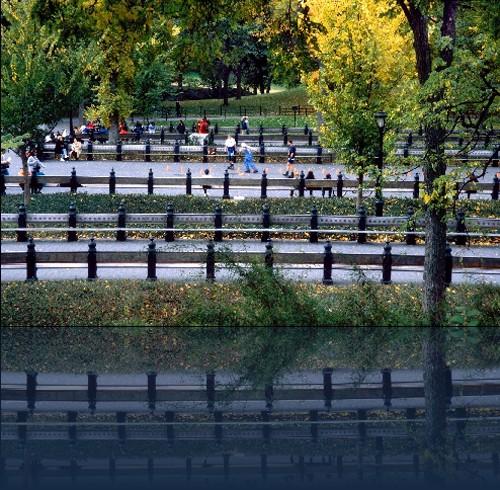 Oliver Weyl central_park.jpg