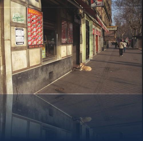 Oliver Weyl madrid010.jpg